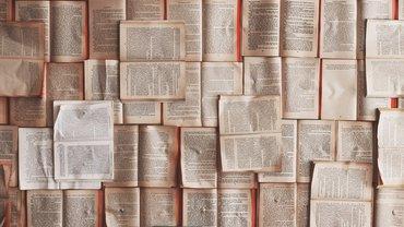 Viele aufgeschlagene Bücher dicht an dicht.